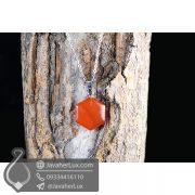 گردنبند سنگ عقیق قرمز مدل راتین _ کد : 400385
